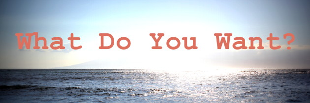 What-Do-You-Want-630x210